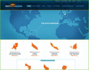 dutechkingdom_webdesign