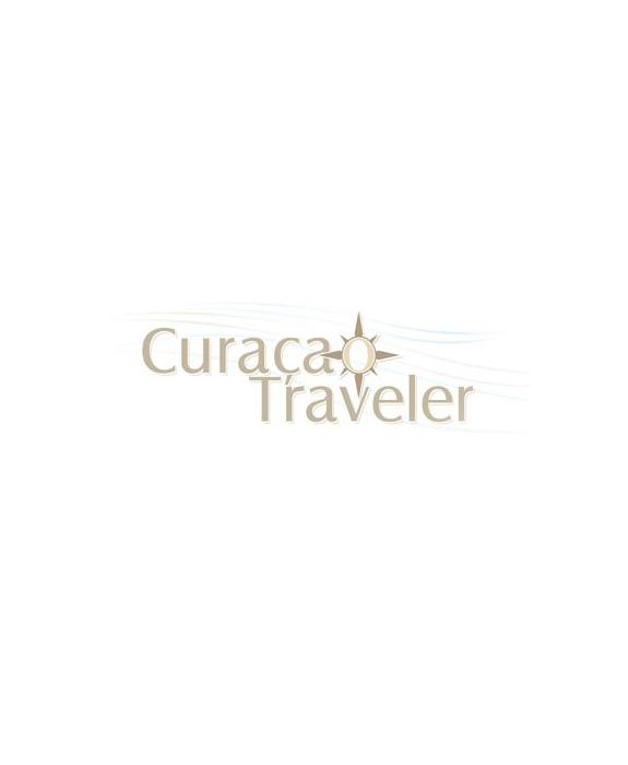 10_1_traveler