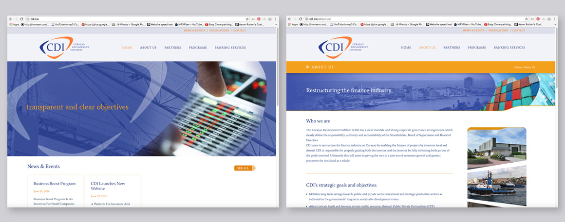 CDI website launched